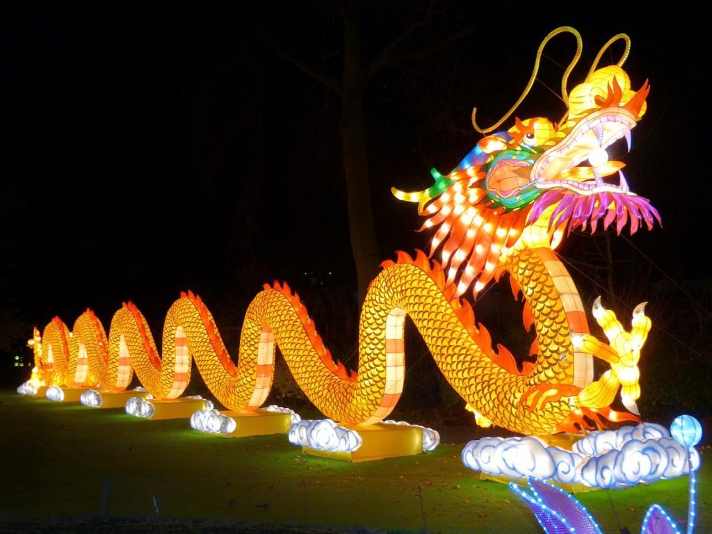 china light festival zoo Antwerpen