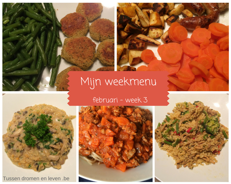 Mijn weekmenu – februari week 3