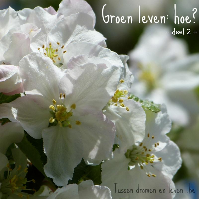 Groen leven, hoe starten? – Deel 2 –
