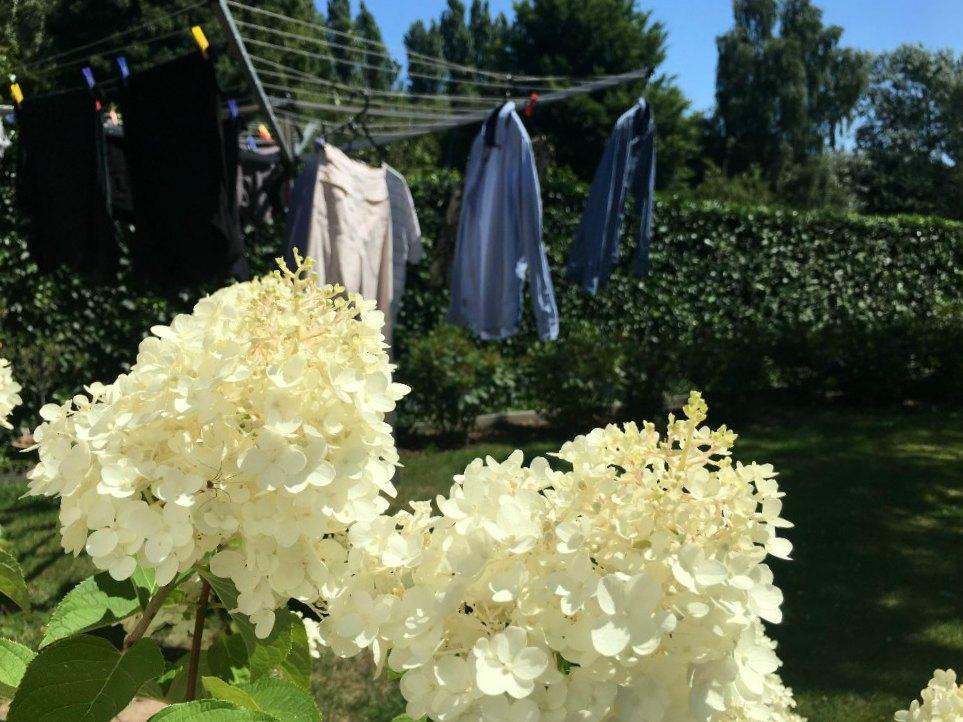 tips voor duurzaam wassen