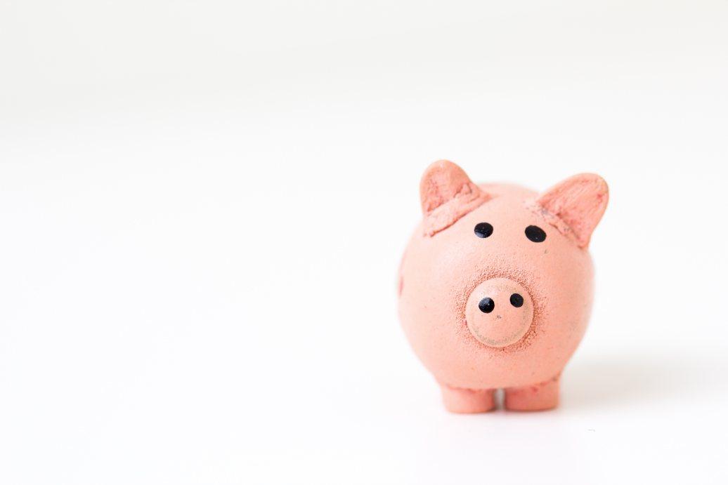 Rondkomen van één inkomen, is het doenbaar?