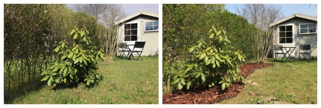 Aanleggen van een border : onze tuin voor en na (+ review Feutriplanta)